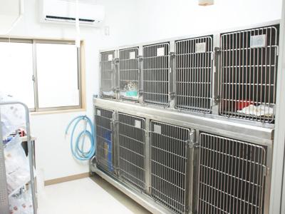 西村獣医科病院の猫舎